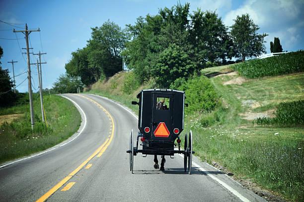 amish-einspänner - pferdekutsche stock-fotos und bilder