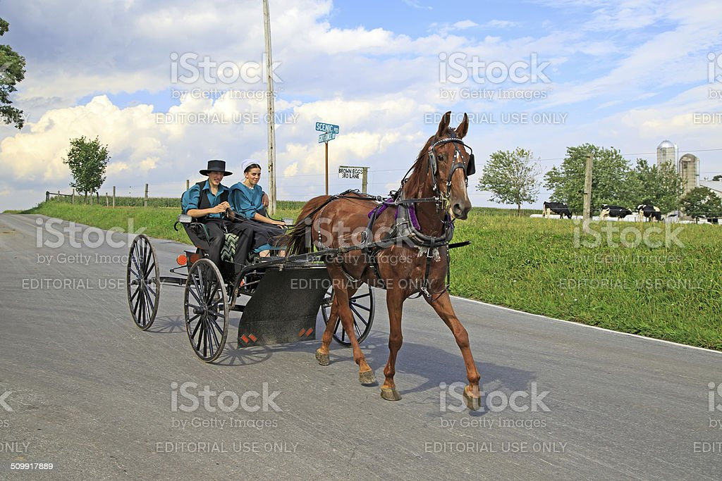 Amish Buggy Ride stock photo