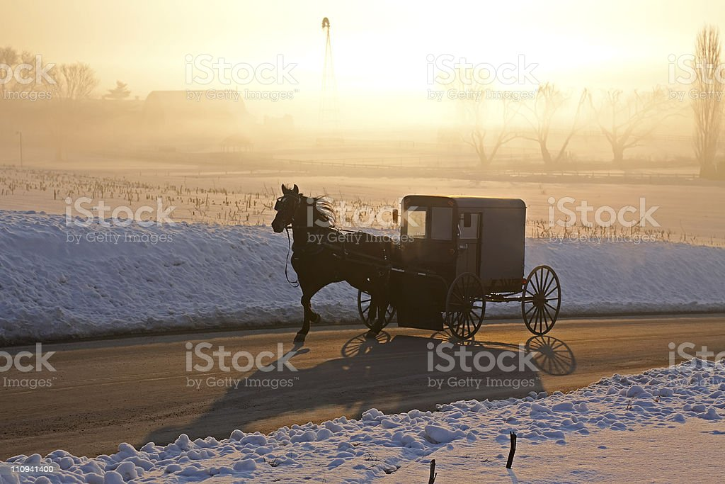 Amish carriage in morning fog stock photo