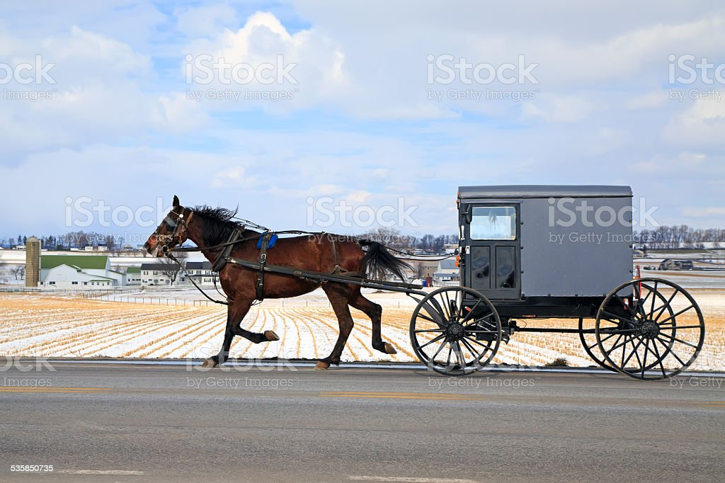 Amish Carriage in Winter stock photo