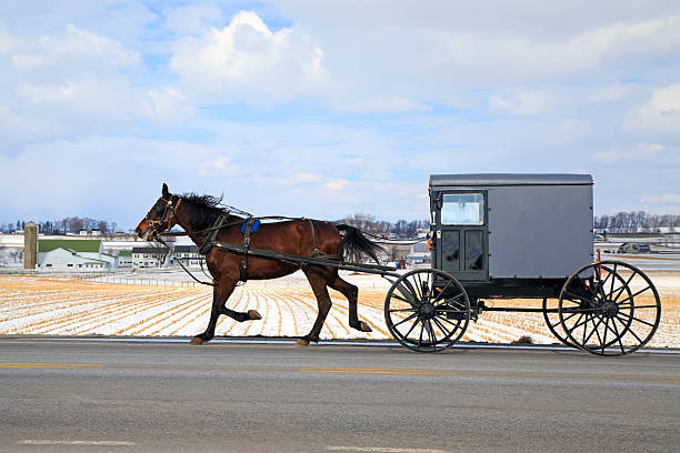amish kutsche im winter - pferdekutsche stock-fotos und bilder