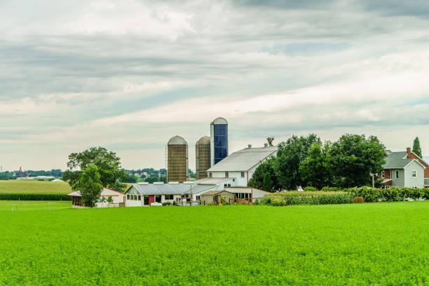 Pays Amish ferme Grange terrain l'agriculture à Lancaster (Pennsylvanie) - Photo