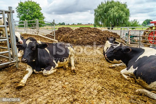 istock Amish country, PA 664820518