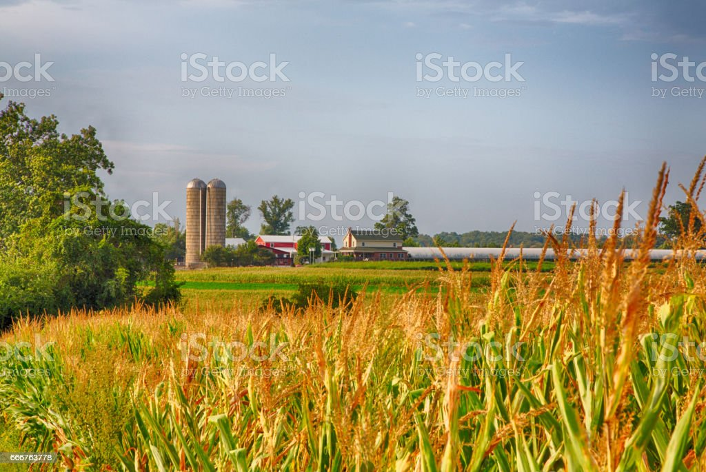 Amish Country foto stock royalty-free