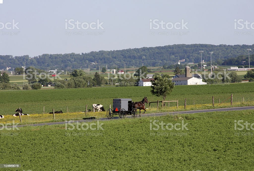 Amish Culture stock photo