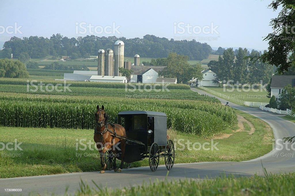 Amish Farm Land stock photo