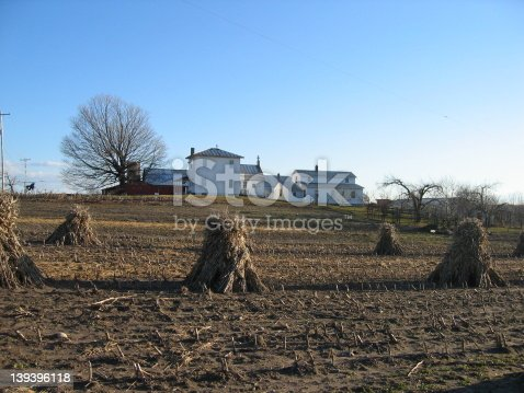 Amish farm in Michigan. I would really appreciate knowing how you use my photo!