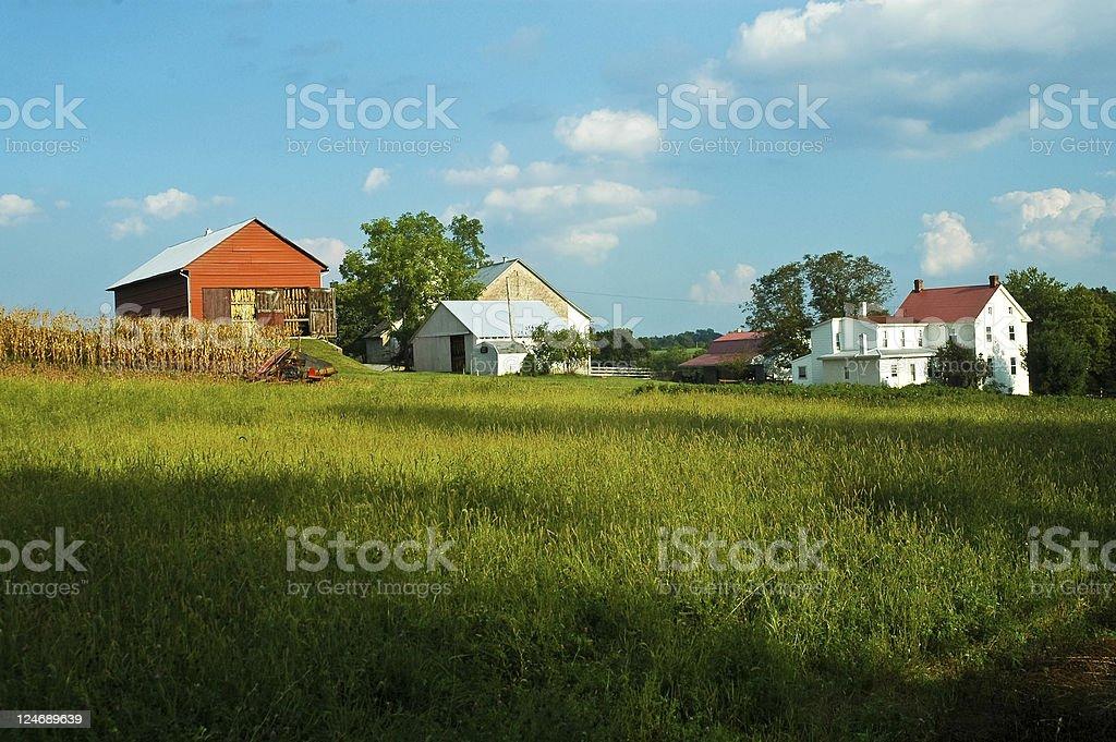 Amish Homestead stock photo