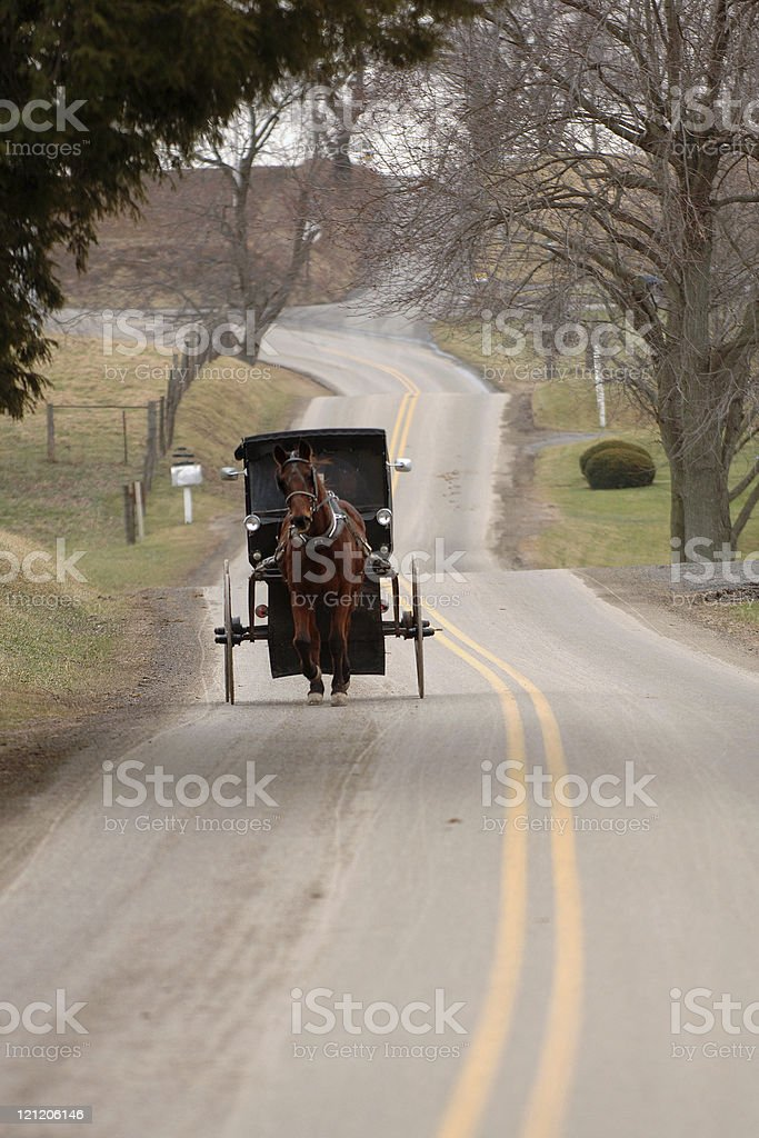 Amish Horse & Buggy stock photo