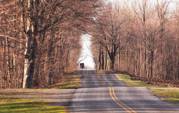 Amish Horse and Buggy Approaching Distant on a Rural Road Taking a long road home on a late afternoon in early spring, a solitary Amish horse and buggy approaches on an obviously oft-traveled carriage route in rural western New York state in the Finger Lakes region. Selective focus on the distant horse and carriage. -- -- -- Amish and rural Finger Lakes scenes: [url=file_closeup.php?id=18297397][img]file_thumbview_approve.php?size=1&id=18297397[/img][/url] [url=file_closeup.php?id=18871805][img]file_thumbview_approve.php?size=1&id=18871805[/img][/url] [url=file_closeup.php?id=16628087][img]file_thumbview_approve.php?size=1&id=16628087[/img][/url] [url=file_closeup.php?id=16796629][img]file_thumbview_approve.php?size=1&id=16796629[/img][/url] [url=file_closeup.php?id=43333412][img]file_thumbview_approve.php?size=1&id=43333412[/img][/url] [url=file_closeup.php?id=14059738][img]file_thumbview_approve.php?size=1&id=14059738[/img][/url] [url=file_closeup.php?id=9604467][img]file_thumbview_approve.php?size=1&id=9604467[/img][/url] [url=file_closeup.php?id=43333302][img]file_thumbview_approve.php?size=1&id=43333302[/img][/url] [url=file_closeup.php?id=13451138][img]file_thumbview_approve.php?size=1&id=13451138[/img][/url] [url=file_closeup.php?id=14152192][img]file_thumbview_approve.php?size=1&id=14152192[/img][/url] [url=file_closeup.php?id=16650726][img]file_thumbview_approve.php?size=1&id=16650726[/img][/url] anachronistic stock pictures, royalty-free photos & images