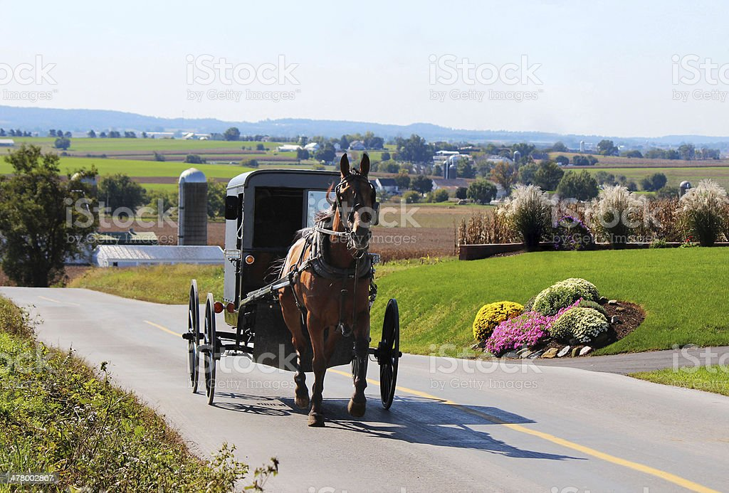 Amish Horse and Buggy in Lancaster, Pennsylvania, Pennsylvania Dutch Country royalty-free stock photo