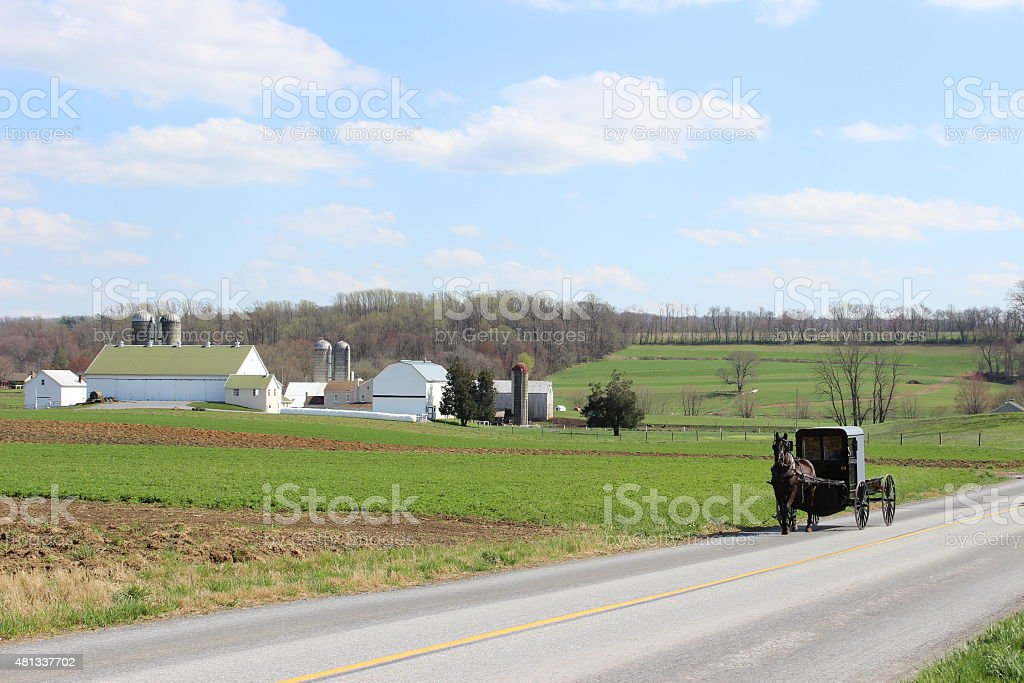 Amish Horse and Buggy in Lancaster Pennsylvania stock photo