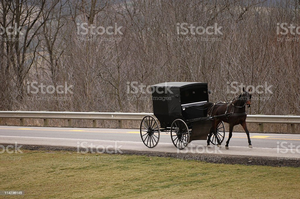 Amish horse and buggy royalty-free stock photo
