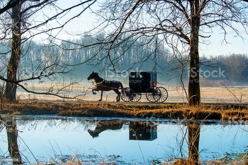 Amish Horse and Buggy Reflected in Pond stock photo