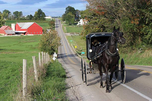 amish pferd mit buggy reisen eine steile country road - pferdekutsche stock-fotos und bilder