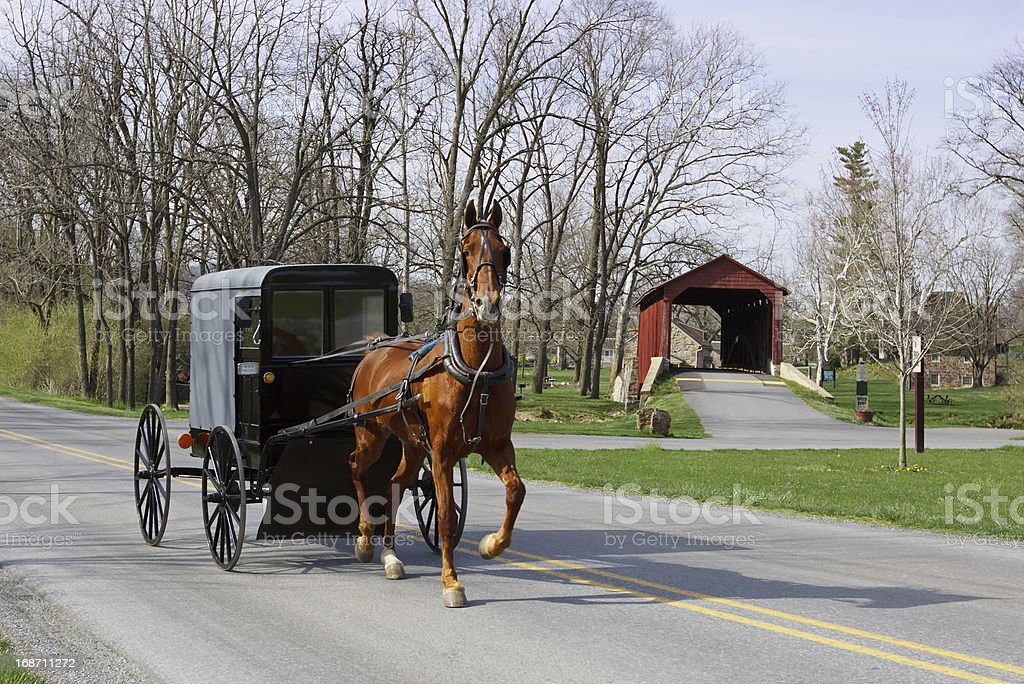 Amish horse and carriage with covered bridge in background  stock photo