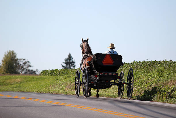 Amish Horse and Cart in Lancaster, Pennsylvania Amish horse pulling cart near Lancaster, Pennsylvania in Pennsylvania Dutch country. working animal stock pictures, royalty-free photos & images