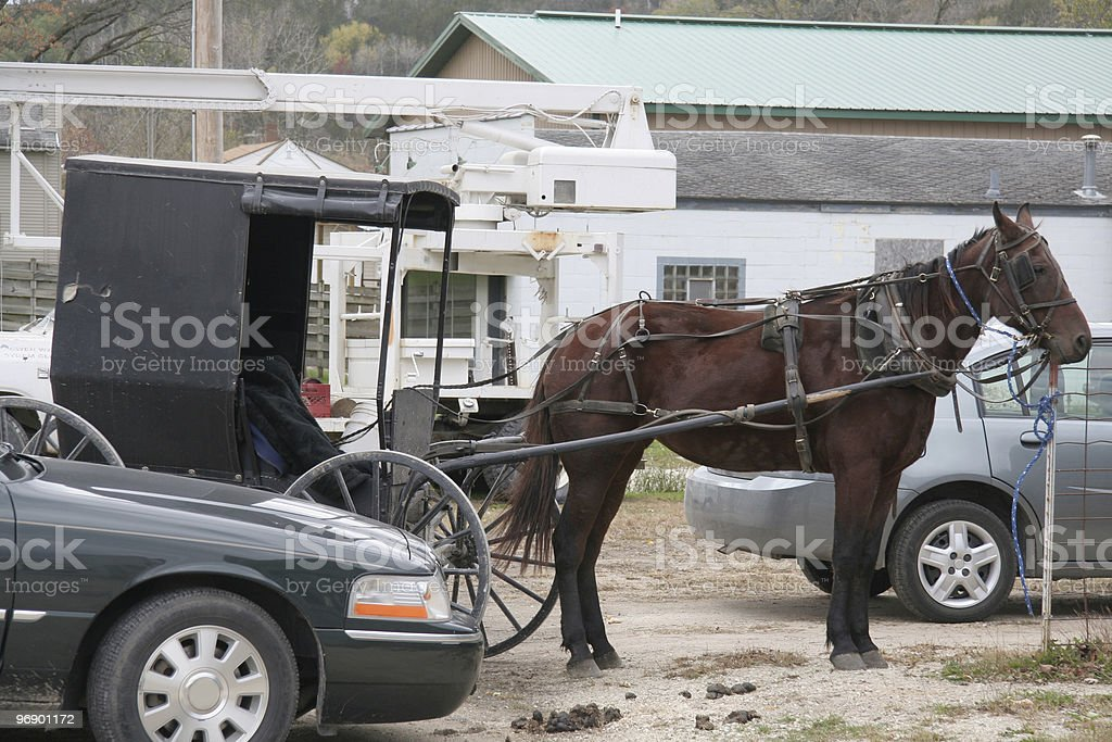 Amish horse parked with modern cars royalty-free stock photo