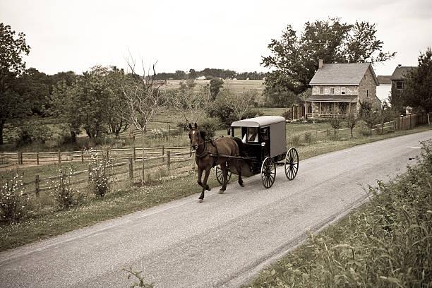 amish horse-drawn buggy lancaster county, pennsylvania - pferdekutsche stock-fotos und bilder