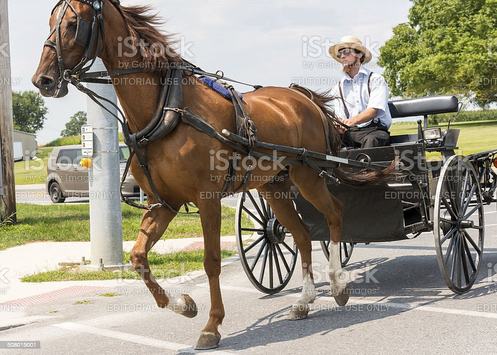 Amish Land stock photo