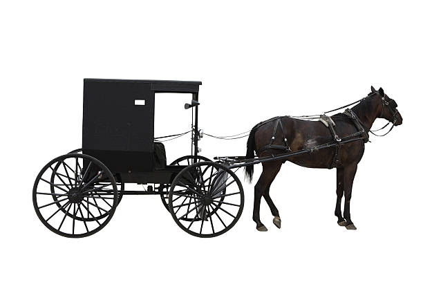 amish transport - pferdekutsche stock-fotos und bilder