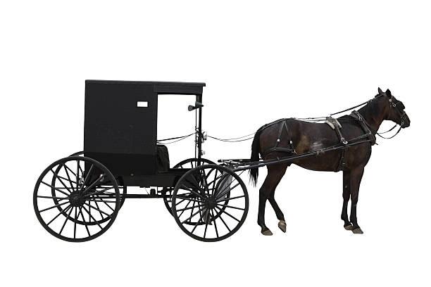 amish transport - 載客馬車 個照片及圖片檔