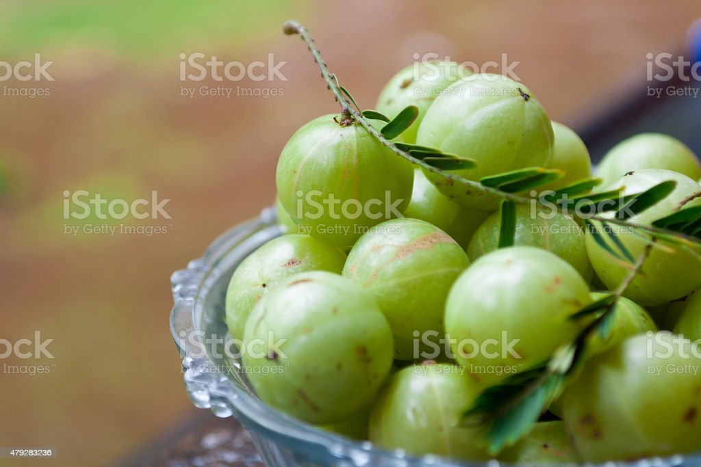Amla Indian gooseberry many stock photo