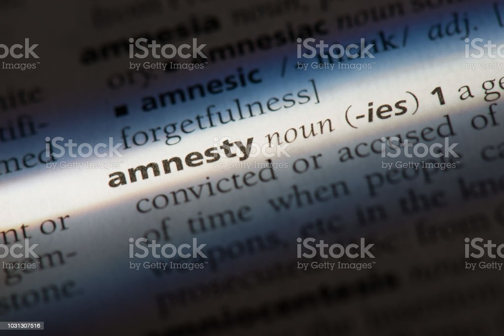 Amnesty word in a dictionary. Amnesty concept stock photo