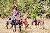 Young, beautiful, confident girl rider, riding horse against the beautiful nature as background.