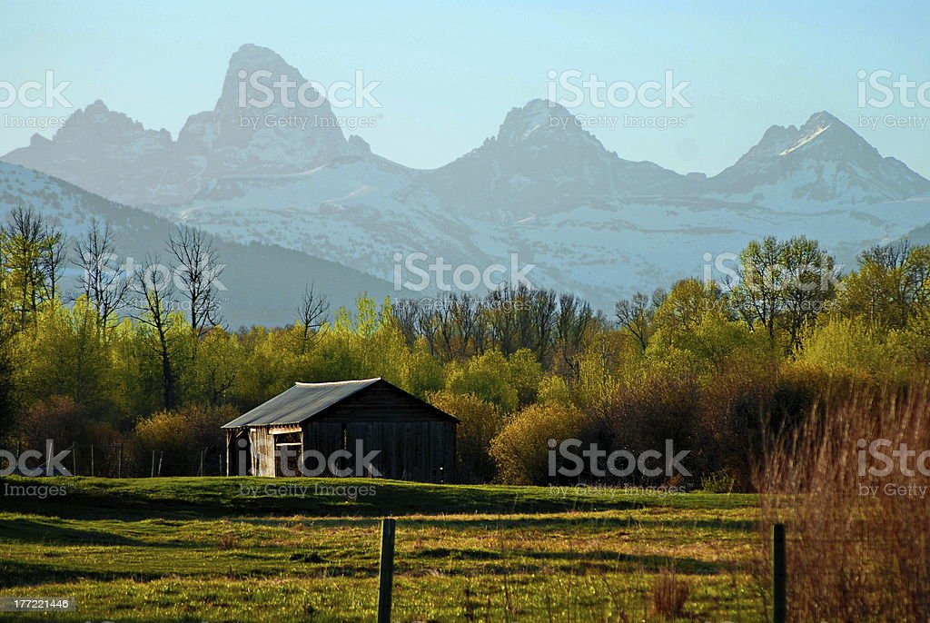 Amongst the Mighty Tetons stock photo