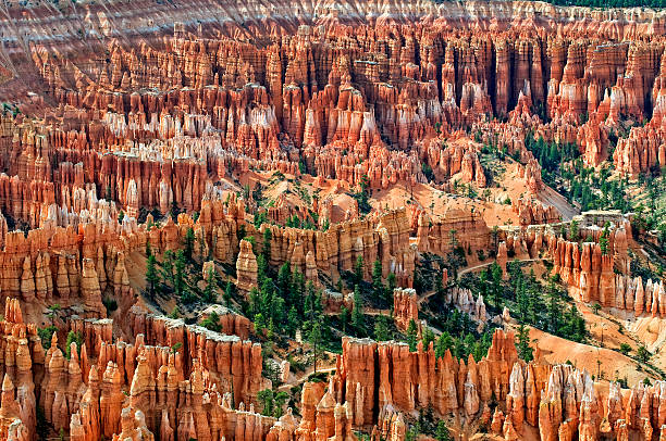 amphitheater at bryce canyon - bryce canyon national park stockfoto's en -beelden