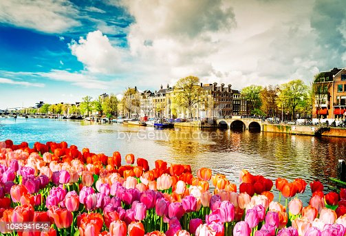 embankment of Amstel canal with spring tulips in Amsterdam, Netherlands, retro toned