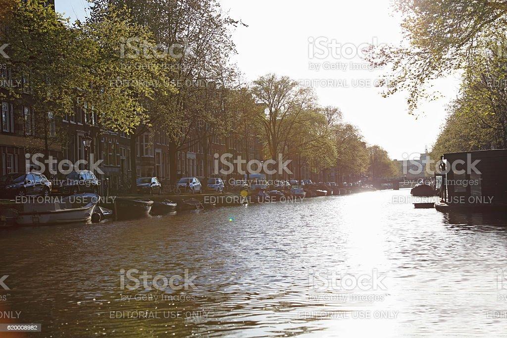Amsterdam canals, Netherlands zbiór zdjęć royalty-free