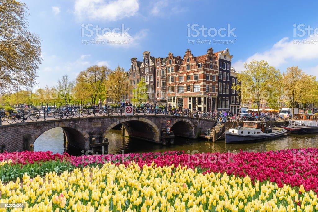 Horizonte de la ciudad de Amsterdam en el waterfront de canal con flores de tulipán de primavera, Ámsterdam, Países Bajos - foto de stock