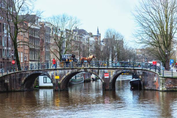 amsterdam paard en wagen, nederland - keizersgracht stockfoto's en -beelden