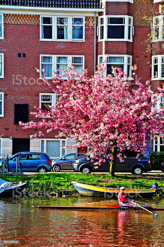 Amsterdam, Netherlands - May 04, 2016 - Man kayaking on river stock photo