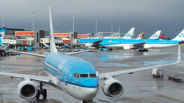 amsterdam, schiphol airport, nederland. klm boeing 737 am terminal - rudermaschine stock-fotos und bilder