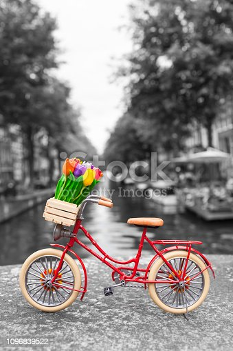 Red dutch miniature bicycle with cute details at Amsterdam scenery background, tulip flowers in wooden crate, leather saddle, bright tires (color key, copy space)