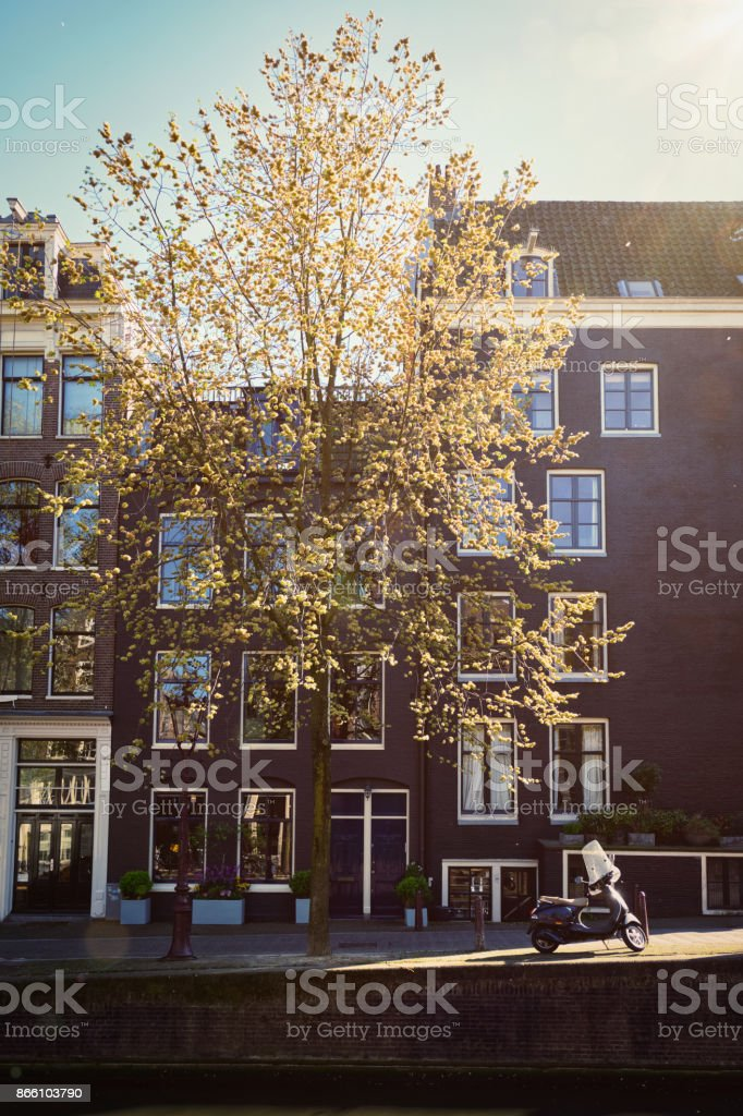 Amsterdam street with canal stock photo