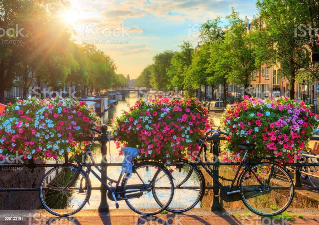 Amsterdam summer sunrise II stock photo