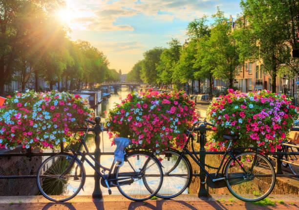Amsterdam summer sunrise II - foto de stock