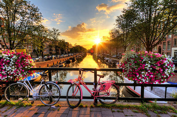amsterdam summer sunrise - netherlands stockfoto's en -beelden