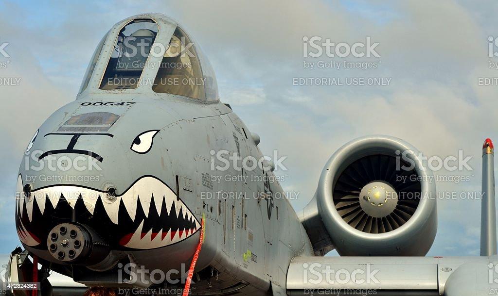 An A-10 Warthog/Thunderbolt II stock photo
