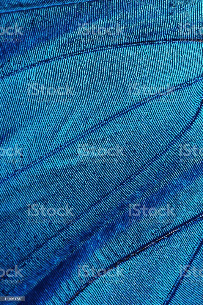 An abstract texture pattern with blue lines stock photo