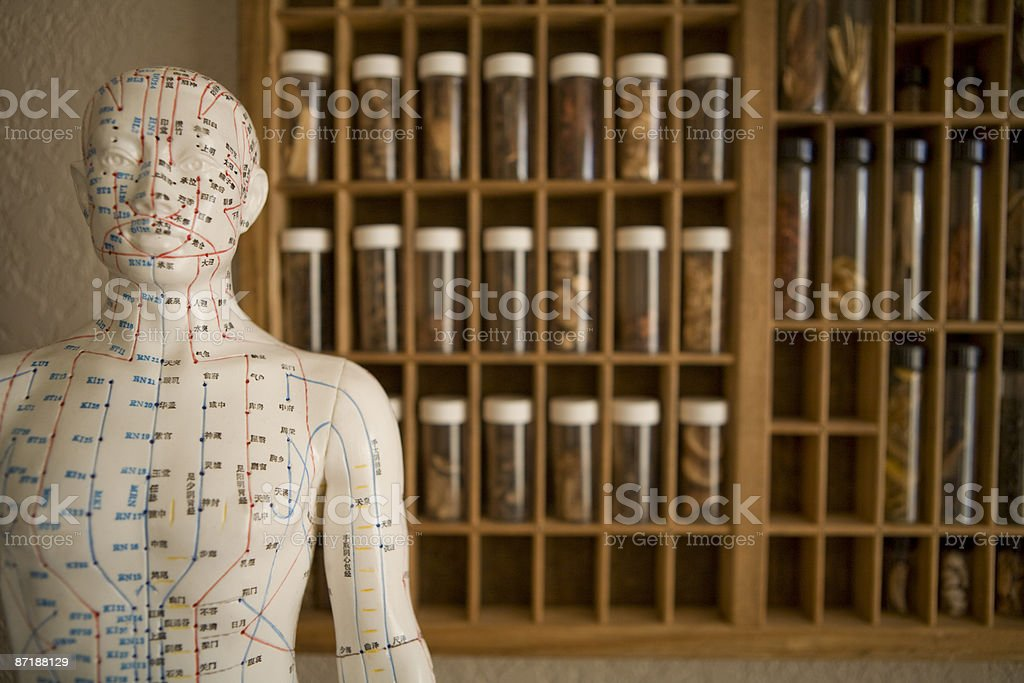 An acupuncture model and Chinese medicine. 免版稅 stock photo