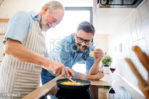 istock An adult hipster son and senior father indoors at home, cooking. 1178760477