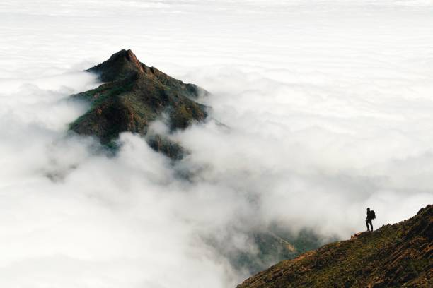 An adventurous male traveler looks out over a mountain peak rising above a thick layer of clouds in Chile's Parque Nacional La Campana A single person stands on a mountain slope in the distance, looking out over a cloudscape through which a lush mountain peak rises. mountains in mist stock pictures, royalty-free photos & images