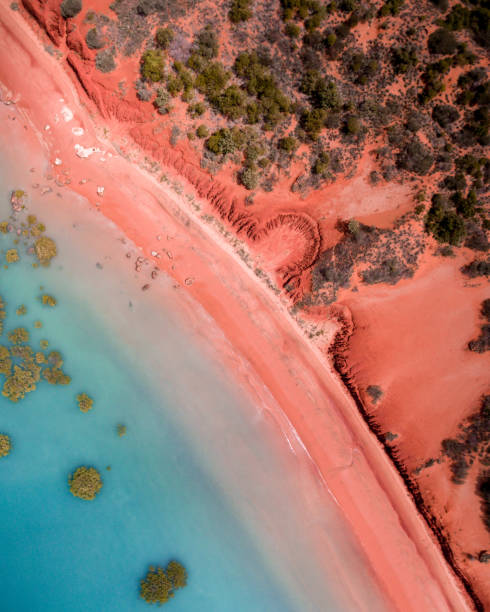 An aerial drone photograph of the Roebuck Bay coastline in Broome, Western Australia This photograph is a town down view and shows red pindan of the Australian desert as it meets the turquoise blue tropical waters of Roebuck Bay. Mangroves are dotted randomly throughout the shallow water. australia stock pictures, royalty-free photos & images