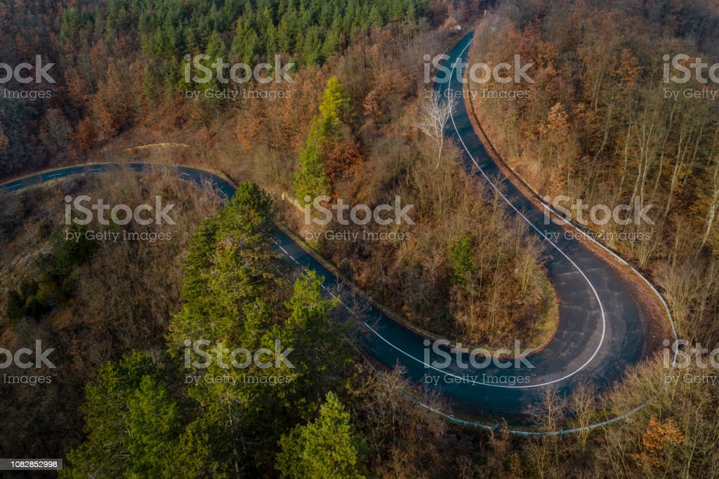 road, drone view, autumn, forest