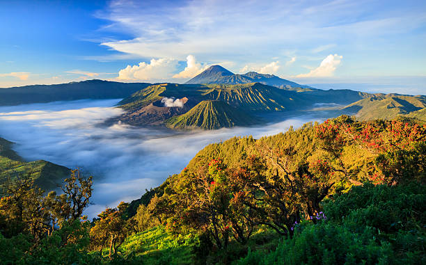 An aerial view of mountain tops in the fog Mount Bromo volcano, East Java, Surabuya, Indonesia indonesia stock pictures, royalty-free photos & images